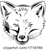 Red Fox Head Viewed From Front Retro Black And White Style