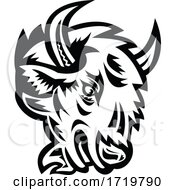 Head Of An Angry North American Bison Or American Buffalo Mascot Black And White