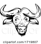 Head Of An African Buffalo Or Cape Buffalo Front View Retro Black And White