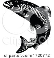 Rainbow Trout Oncorhynchus Mykiss Steelhead Columbia River Redband Trout Jumping Retro Woodcut Black And White
