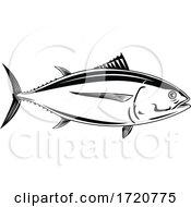 Pacific Albacore Thunnus Alalunga Or Longfin Tuna Side View Retro Woodcut Black And White