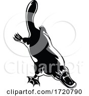 Duck Billed Platypus Ornithorhynchus Anatinus Diving Retro Woodcut Black And White