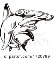 Scalloped Hammerhead Shark Or Sphyrna Lewini Front View Retro Woodcut Black And White