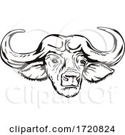Head Of Cape Buffalo Or African Buffalo Syncerus Caffer Front View Retro Woodcut Black And White