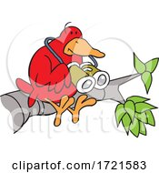Cartoon Red Bird Holding Binoculars On A Branch