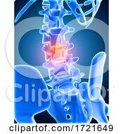 3D Medical Background Of Skeleton With Lower Spine Highlighted