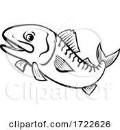 Atlantic Mackerel Boston Mackerel Norwegian Mackerel Or Scomber Scombrus Jumping Up Cartoon Black And White