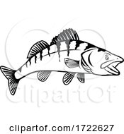 Walleye Yellow Pike Or Yellow Pickerel Side View Stencil Black And White Retro Style