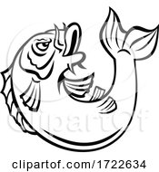 Koi Jinli Or Nishikigoi Fish Jumping Up Cartoon Black And White Style