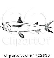 Bombay Duck Fish Harpadon Nehereus Bummalo Bombil Boomla Or Strange Fish Side View Stencil Black And White Retro