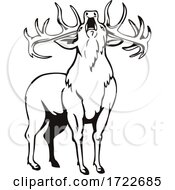 Red Deer Cervus Elaphus Roaring Viewed From Front Stencil Black And White Retro