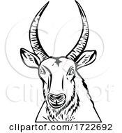 Head Of A Defassa Waterbuck Front View Stencil Black And White Retro Style