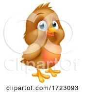Robin Redbreast Cartoon Baby Bird