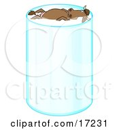 Happy Relaxed Brown Cow With Horns Leisurely Floating And Taking A Swim In A Tall Glass Of Milk