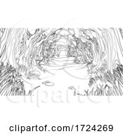 Forest Woodland Trees Path Coloring Book Scene