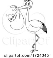Black And White Stork With A Bundled Baby