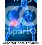 3D Medical Image Of Skeleton With Hip Bone Highlighted