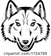 Head Of Artic Wolf Front View Mascot Black And White