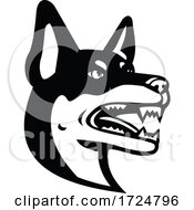 Poster, Art Print Of Head Of Australian Kelpie Barb Or Farmer Dog Mascot Black And White