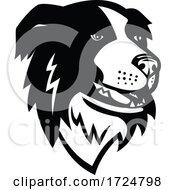 Poster, Art Print Of Head Of Border Collie Or Scottish Sheepdog Dog Mascot Black And White