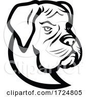 Poster, Art Print Of Head Of Boxer Dog German Boxer Or Deutscher Boxer Mascot Black And White