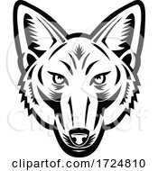 Head Of American Jackal Front View Retro Woodcut Black And White