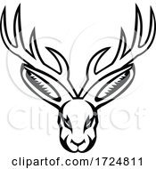 Head Of A Jackalope Front View Mascot Black And White