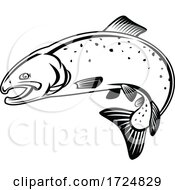 10/09/2020 - Coho Salmon Oncorhynchus Kisutch Silver Salmon Or Silvers Jumping Up Retro Woodcut Black And White
