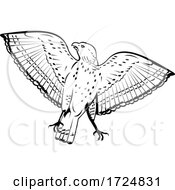 Poster, Art Print Of Broad Winged Hawk Flying Front View Retro Woodcut Black And White Style