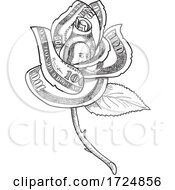 10/10/2020 - Rose Flower With Money Or US One Hundred Dollar Note Bill Printed On Petals Drawing Black And White
