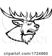 Head Of A Red Deer Or Cervus Elaphus Stag Or Buck With Antlers Roaring Side View Mascot Black And White