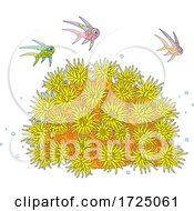 Fish Over A Sea Anemone