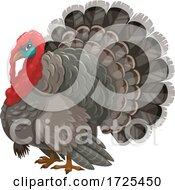 Poster, Art Print Of Turkey Bird