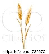 10/19/2020 - Wheat