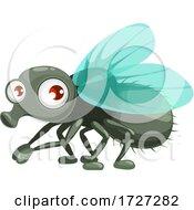 Cute House Fly