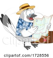 Traveling Snowbird Reading A Map