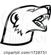 Head Of Angry Slender Mongoose Galerella Sanguinea Black Tipped Mongoose Black Tailed Mongoose Mascot