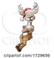 Christmas Reindeer In Santa Hat Cartoon
