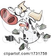 Cartoon Angry Bovine Having A Cow