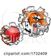 Tiger Cricket Player Animal Sports Mascot