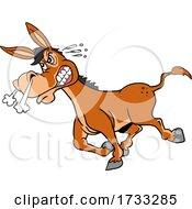 Tough Donkey