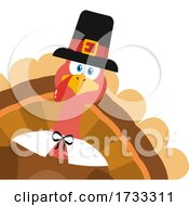 Turkey Bird Wearing A Pilgrim Hat