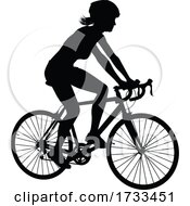 Bike And Bicyclist Silhouette