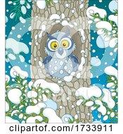 Cute Owl In A Tree Hollow