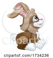 Easter Bunny Rabbit Cartoon Character Mascot