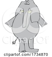 Cartoon Elephant With Two Trunks