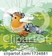 01/17/2021 - Hoopoe Bird On A Branch
