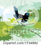 01/17/2021 - Magpie Bird On A Branch