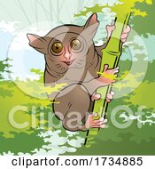 Cute Tarsier on a Bamboo Stalk by Lal Perera #COLLC1734885-0106