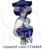 01/17/2021 - Panther Plumber Or Mechanic Holding Spanner